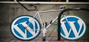 Die 10 besten WordPress Plugins